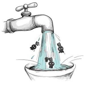 洛瑞克净水器