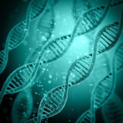 华大基因检测