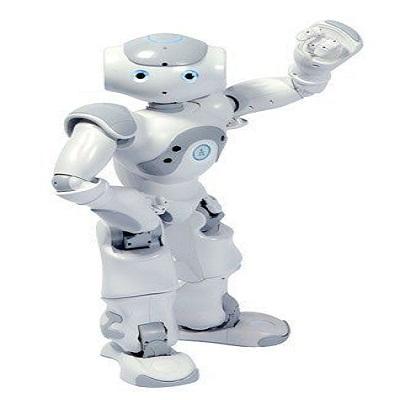 爱萝卜机器人