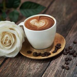 doutor咖啡